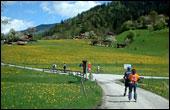 Zillertal 2002
